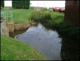 reed cutting watercourse management